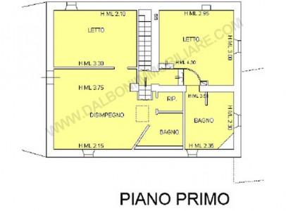 WEB PIANTA PRIMO